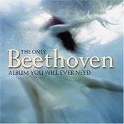 The Only Beethoven Album You Will Ever Need (disc 2)