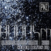 Electro House Beats 2013: Super Bonus Edition