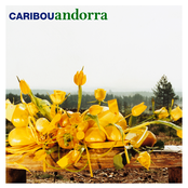 album Andorra by Caribou