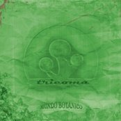 Tricoma - Mundo Botánico