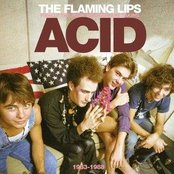 Finally The Punk Rockers Are Taking Acid