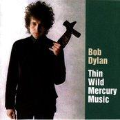 Thin Wild Mercury Music