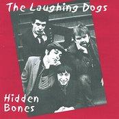 Hidden Bones