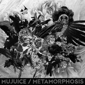 album Metamorphosis by Mujuice