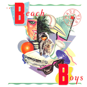 album Made in U.S.A. by The Beach Boys