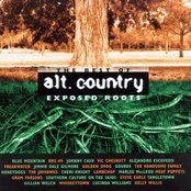 The Best of alt.country: Exposed Roots (disc 1)