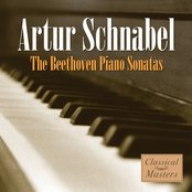 The Beethoven Piano Sonatas