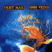 1000 Veins