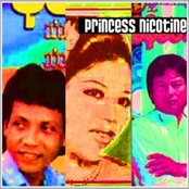 Princess Nicotine: Folk and Pop Music of Myanmar, Volume 1
