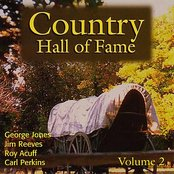 Country Hall Of Fame Vol. 2