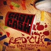 Red Cup (I Fly Solo) [feat. Lacey Schwimmer & Spose] - Single