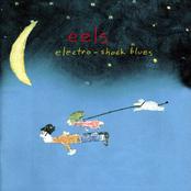 Efils' God by Eels