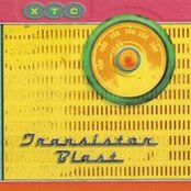 Transistor Blast: The Best of the BBC Sessions (disc 2)