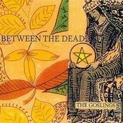 Between The Dead