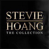 Stevie Hoang: The Collection