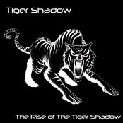 The Rise of The Tiger Shadow