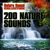 200 Nature Sounds
