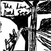 The Live Dead See