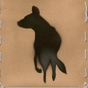 Wild Dogs In Winter EP