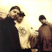 B.U.G. Mafia - Toți borfași Songtext und Lyrics auf Songtexte.com