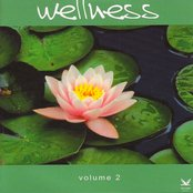 Wellness Vol.2: A Beautiful Journey to Inner Relaxation