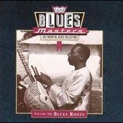 Blues Masters, Volume 10: Blues Roots