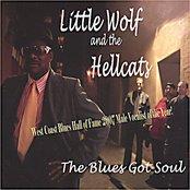 The Blues Got Soul