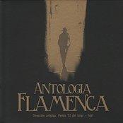 Antologia Flamenca