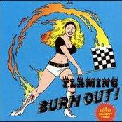 Flaming Burnout: An Estrus Benefit Compilation