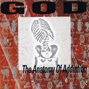 Anatomy Of Addiction