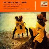 Vintage Dance Orchestras No. 161 - EP: Ritmos Del Sur