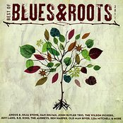 Best of Blues & Roots - 2011