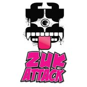 Zuk Attack