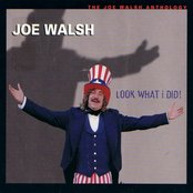 Look What I Did! The Joe Walsh Anthology