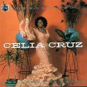 Introducing ... Celia Cruz