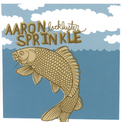 album Lackluster by Aaron Sprinkle