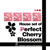 """House set of """"Perfect Cherry Blossom"""""""