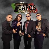 Musica de Los Capos De Mexico