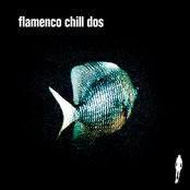 Flamenco Chill Dos