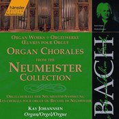 Bach, J.S.: Organ Chorales From the Neumeister Collection