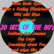 20 Hits of the 80's