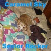 Senior Rocker