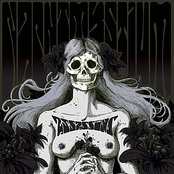 album Assassins by Nachtmystium