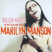 Killer Wasps: The Real Ultra Rare Tracks