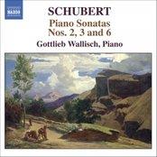 SCHUBERT: Piano Sonatas Nos. 2, 3 and 6
