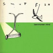 Lawnmower Mind