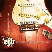 Waukesha Blues Festival