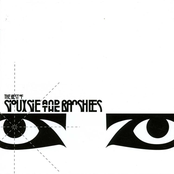 album The Best Of... by Siouxsie and the Banshees