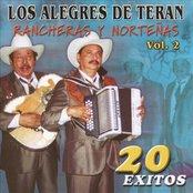 Rancheras Y Nortenas 20 Exitos Vol. 2