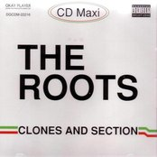 Clones and Section